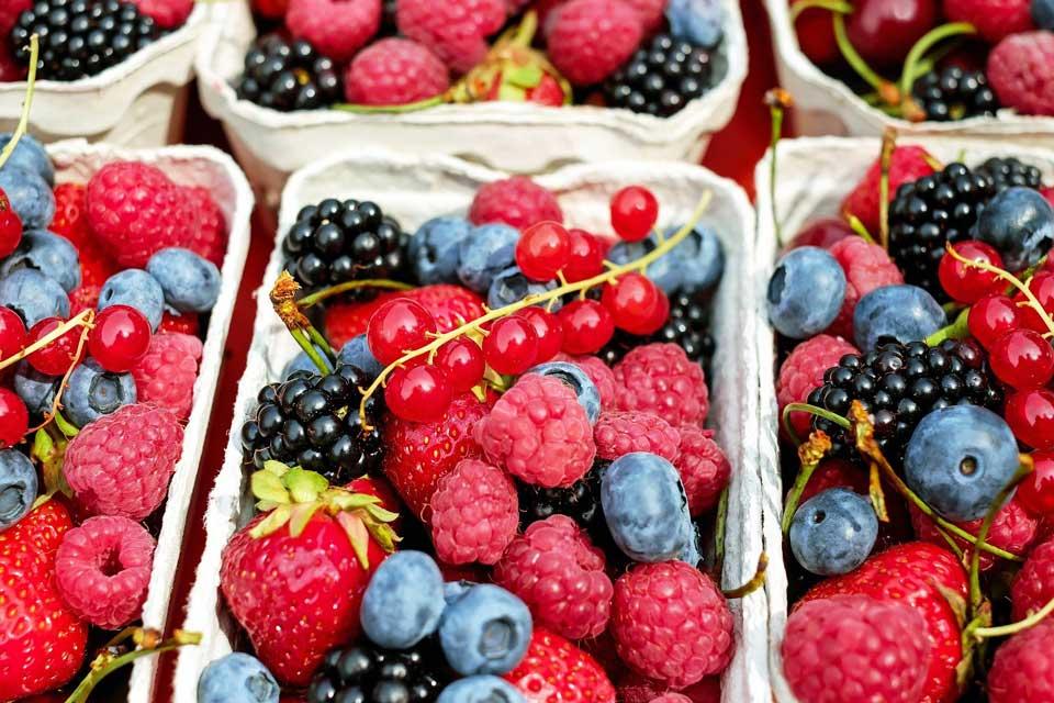 Beeren Saisonkalender für die Küche